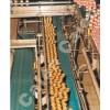 供应塑料链板、休闲食品加工设备,输送机、滚筒机械、商用洗碗机